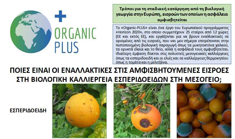 Citrus Factsheet Greek